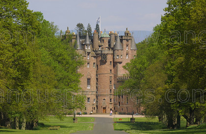 8165677 