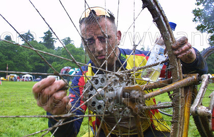 8561309 