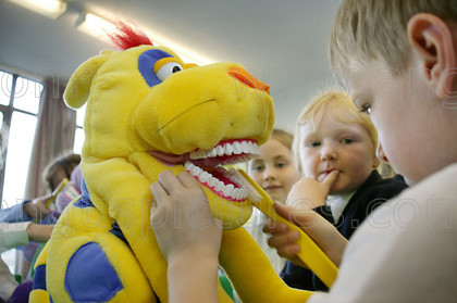 7245302 