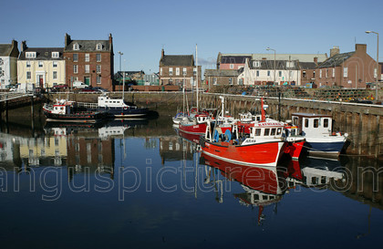 7227194 