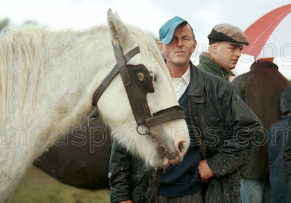 7245678 