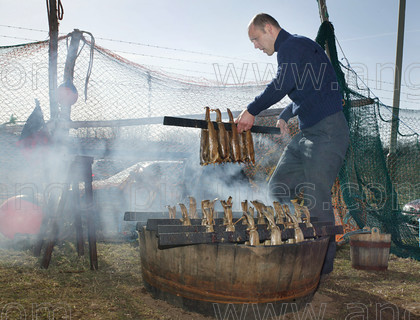 8194994 
