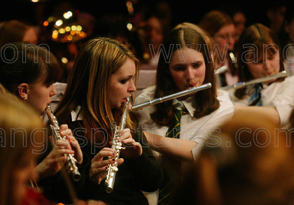 Angus 1aPR 