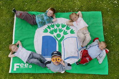 7247203 