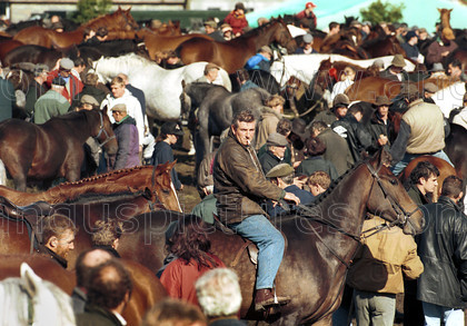 8728648 