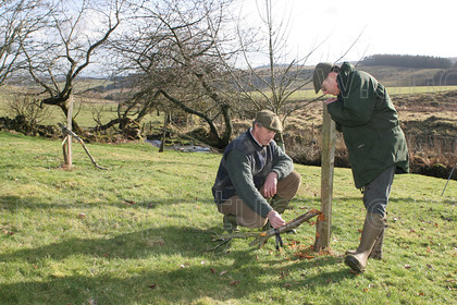 8190951 