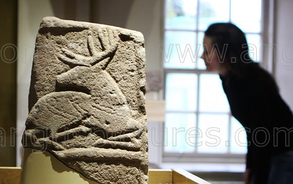 19433865 